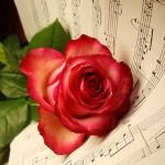 Музика от рози